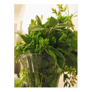 Bunch of fresh herbs from garden postcard