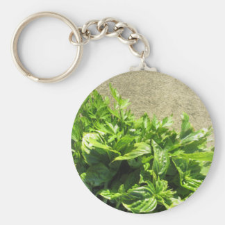 Bunch of fresh herbs keychain