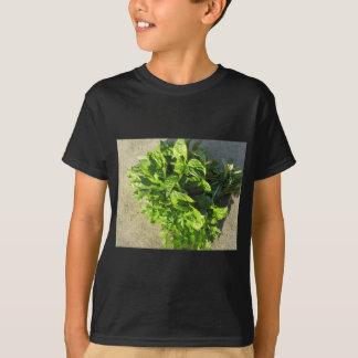 Bunch of fresh herbs T-Shirt