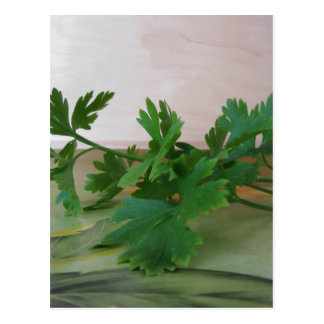 Bunch of fresh parsley on the table postcard