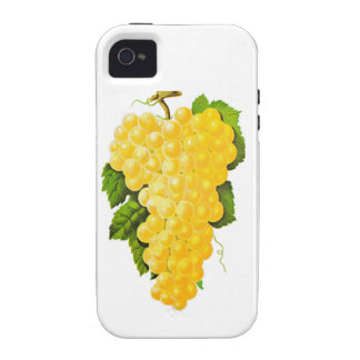 Bunch of Grapes Vibe iPhone 4 Case