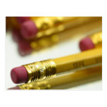 Bunch Of Pencils Post Cards