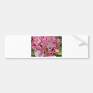 Bunch of pink wild flowers car bumper sticker