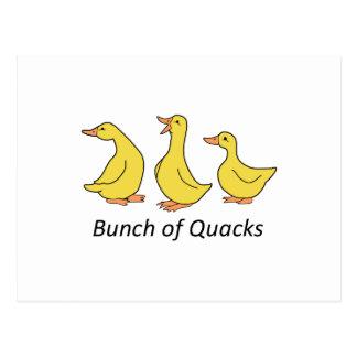 BUNCH OF QUACKS POSTCARD