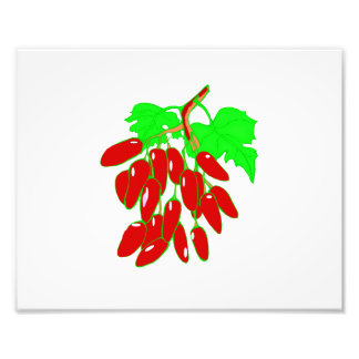 Bunch of red peppers art photo