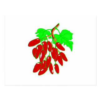 Bunch of red peppers postcard