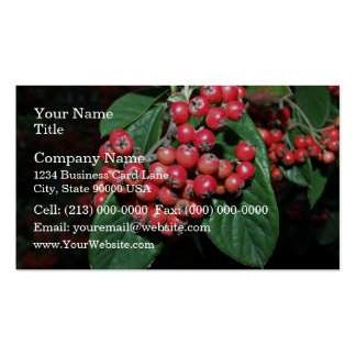 Bunch of ripen red berries Double-Sided standard business cards (Pack of 100)