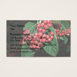 Bunch of ripen red berries business card
