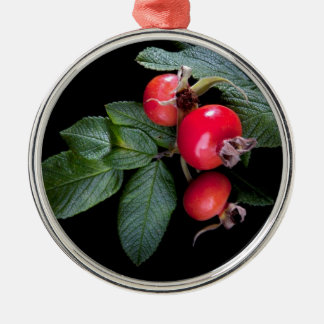bunch of rose hip with berry metal ornament