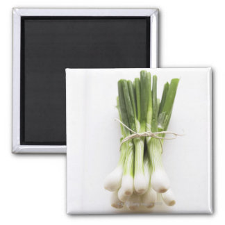Bunch of spring onions on white chopping board fridge magnets