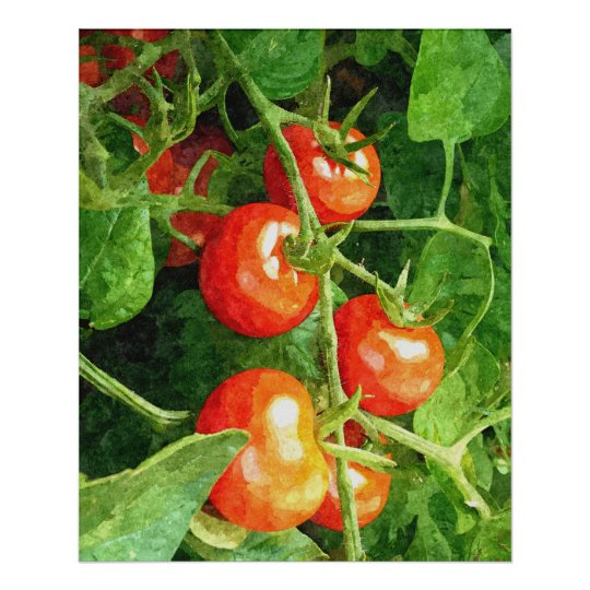 Bunch of Tomatoes Poster