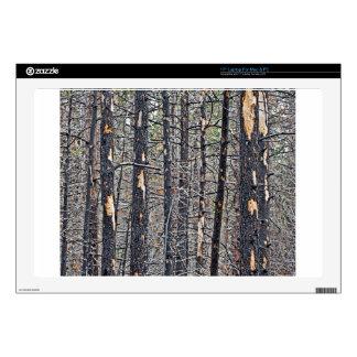 "Bunch Of Trees 17"" Laptop Skin"