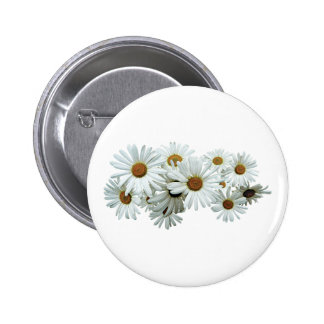 Bunch of White Daisies Pinback Button