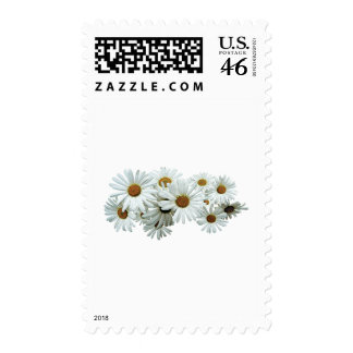 Bunch of White Daisies Stamp