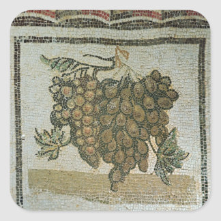 Bunch of white grapes, Roman mosaic Square Sticker