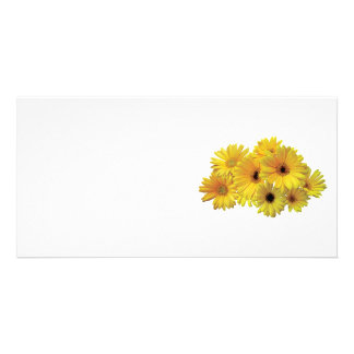 Bunch of Yellow Daisies Photo Card