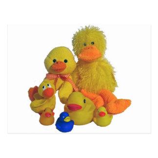 buncha ducks postcard