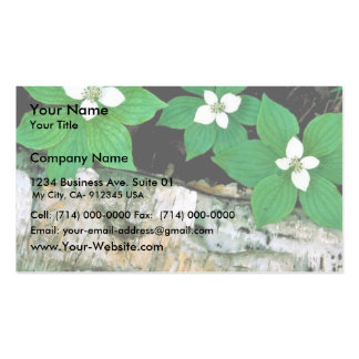 Bunchberry Business Card