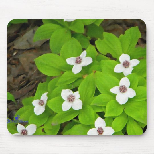 Bunchberry Mouse Pad