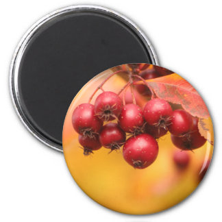 Bunches o' Berries magnet