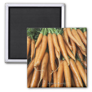 Bunches of carrots, full frame 2 inch square magnet