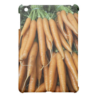 Bunches of carrots, full frame case for the iPad mini