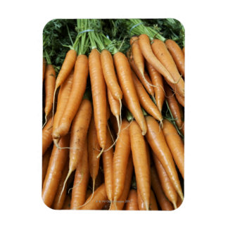Bunches of carrots magnet