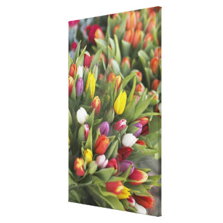Bunches of colorful tulips canvas print