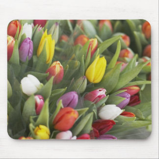 Bunches of colorful tulips mouse pad