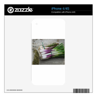 Bunches of fresh onions and asparagus hand picked decals for the iPhone 4
