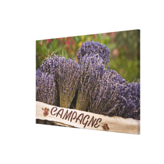Bunches of lavender for sale, Vence, Provence, Canvas Print