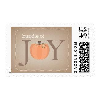 Bundle of Joy Neutral Pumpkin Fall Baby Postage
