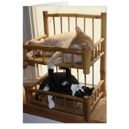 Bunk Bed Brothers Card
