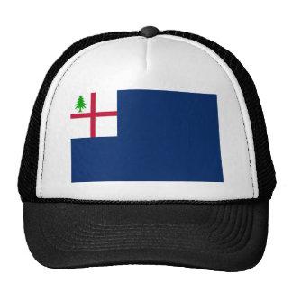 Bunker Hill Flag Trucker Hat