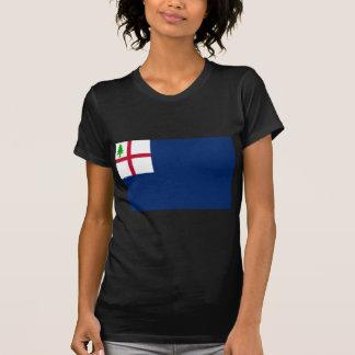 Bunker Hill Flag Tee Shirts