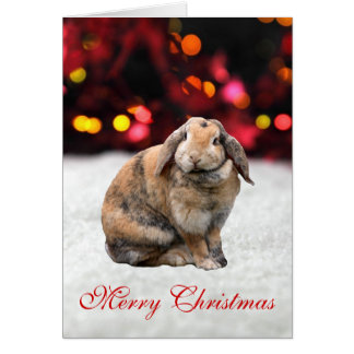 Bunnie rabbit cute photo custom Christmas Card