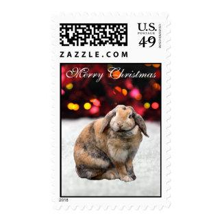 Bunnie rabbit cute snow custom Christmas postage