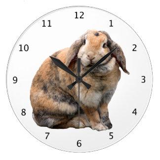 Bunnie rabbit lop-eared beautiful photo portrait large clock