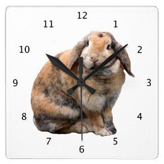 Bunnie rabbit lop-eared beautiful photo portrait square wall clock
