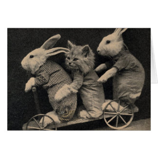 Bunnies and Kitten, Greeting Card