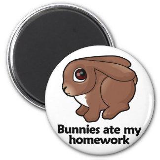 Bunnies ate my homework fridge magnet