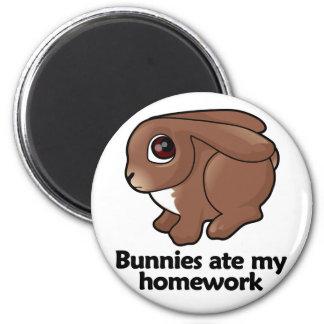 Bunnies ate my homework magnet