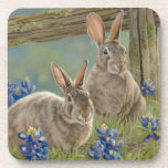 Bunnies & Bluebonnets Coasters