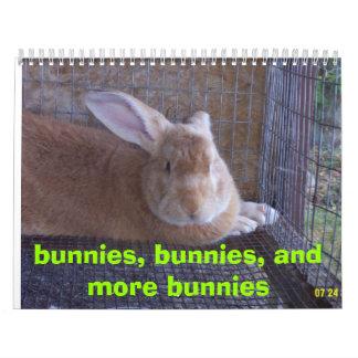 bunnies, bunnies, and more bunnies calendar