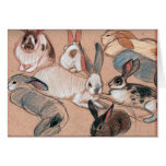Bunnies! Card