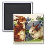 Bunnies Easter Magnet