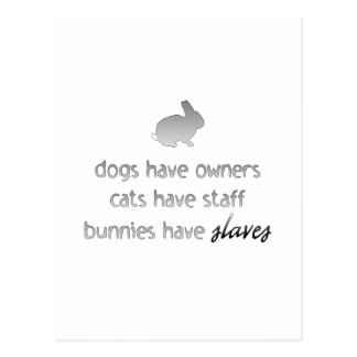 Bunnies Have Slaves Postcard
