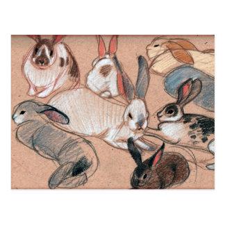 Bunnies Post Cards