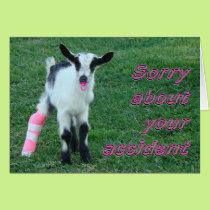 Bunny1375-customize Card