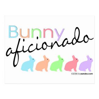 Bunny Aficionado Postcard